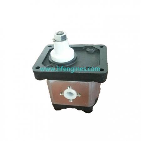 Hydraulic gear pump 5088381